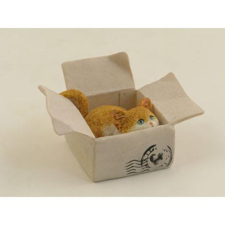 CAT IN THE BOX CURIOSO *SK*12 (D3583)
